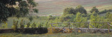 Fence in a Vineyard, Barbaresco Docg, Piedmont, Italy Wall Decal by  Panoramic Images