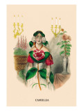 Camellia Wall Decal by J.J. Grandville