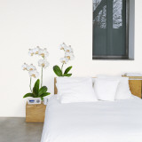 White Orchid Wall Decal