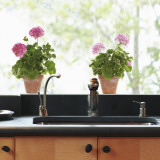 Geranie (rosa) Fensteraufkleber