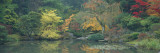 The Japanese Garden Seattle Wa, USA Wall Decal by  Panoramic Images