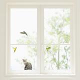 Budgerigars and Cat Window Decal Sticker Naklejka na okno