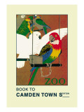 The London Zoo: Exotic Birds Wall Decal by S.t.c. Weeks