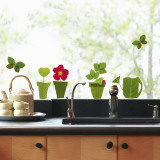 Flowerpots  (Window Decal) Wall Decal