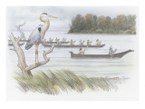 A Heron Perched on a Dead Branch Premium Giclee Print by Roger Cooke