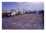 New Bedford Fishing Boats Wall Decal by William B. Folsom