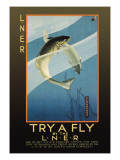 Try a Fly Wall Decal by V.l. Danvers