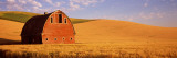 Old Barn in a Wheat Field, Palouse, Whitman County, Washington State, USA Wall Decal by  Panoramic Images
