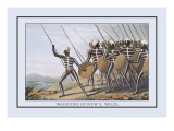 Warriors of New South Wales Wall Decal by J.h. Clark
