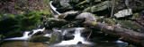 Stream Flowing Through Rocks, Appalachian Mountains, North Carolina, USA Wall Decal by  Panoramic Images