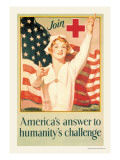 America's Answer to Humanity's Challenge Wall Decal by H. Hayden