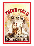 Fresh and Cold, Direct from the North Pole Wall Decal by F. Klemm