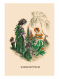 Scabieuse et Souci Wall Decal by J.J. Grandville
