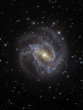 The Southern Pinwheel Galaxy Photographic Print by  Stocktrek Images