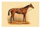 Le Destrier Wall Decal by L. Penicaut
