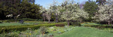 Blossom Trees in a Garden, Ellwanger Garden, Rochester, New York State, USA Wall Decal by  Panoramic Images