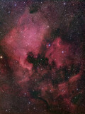 The North American Nebula (NGC 7000) is an Emission Nebula in the Constellation Cygnus Photographic Print by  Stocktrek Images