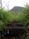 The First Step Invites Hikers up Koko Crater Photographic Print by  Stocktrek Images