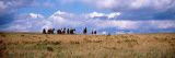 Horses on a Landscape, East Glacier Park, Glacier County, Montana, USA Wall Decal by  Panoramic Images