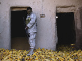An Iraqi Army Soldier Checks a Storage Room Full of Corn Photographic Print by  Stocktrek Images