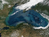 The Black Sea in Eastern Russia is Experiencing an Ongoing Phytoplankton Bloom, Photographic Print