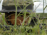 An Infantryman with the Royal Thai Marines Takes up a Position at Hatyao Beach Photographic Print by  Stocktrek Images