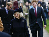 Prince William, Prince Harry and Camilla, Duchess of Cornwall, arrive at Sandringham with members o Fotografisk tryk