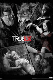 True Blood - Shattered Mirror Prints