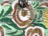 Close-Up of Faded Paint Work on Farmer&#39;s Cart Photographic Print by Mark Avellino
