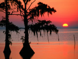 Sunrise at Lake Palourde with Spanish Moss Trees in Silhouette Photographic Print by John Elk III