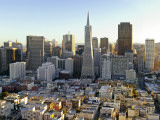 Transamerica Pyramid Building and Downtown from Top of Coit Tower Photographie par Emily Riddell