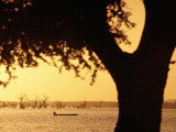 Silhouetted Tree with Fisherman in Canoe on Lake in Background Photographic Print by Frans Lemmens