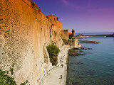 Chateau Royal and the Harbour at Collioure Photographic Print by Glenn Beanland