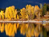Autumn Colours on Shore of Lake Payette Lámina fotográfica por David Ryan