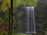Milla Millaa Falls Photographic Print by Glenn Van Der Knijff