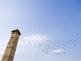 Low Angle View of Great Mosque Minaret and Flock of Birds Photographic Print by Holger Leue