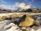 Winter in Lamar Valley Photographic Print by Douglas Steakley
