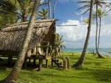 Bungalow at Derick's, Little Corn Island. Fotografisk tryk af Margie Politzer