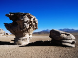 Bizarre Rock Formation known as Arbol De Piedra (Stone Tree) Photographic Print by Craig Pershouse