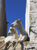Goats Sitting by House in Old Town Photographic Print by Jane Sweeney