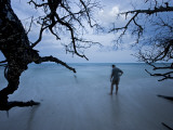 Man on Beach with Trees Photographic Print by Johnny Haglund