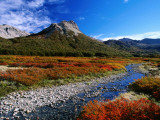 Lenga (Nothofagus) in Autumn Colours, Laguna Jakob Photographic Print by Grant Dixon