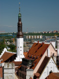Tallinn Rooftops with Town Hall Tower Photographic Print by Frank Wing