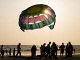 Paragliders on Beach at Sunset Photographic Print by Greg Elms