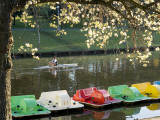 Rower and Paddle Boats on River Torrens Photographic Print by David Wall