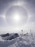 Solar Halo (Due to Blowing Snow and Ice Crystals) Above Southern Patagonian Icecap Fotografiskt tryck av Grant Dixon
