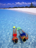 Two People Snorkelling in Blue Water Near Beach Photographic Print by Greg Johnston