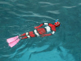 Young Boy Snorkelling in Nemo Stinger Suit Photographic Print by Cathy Finch