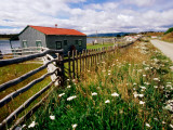 Buildings, Fences and Wildflowers at Oldest Estancia (Cattle Station) in Patagonia Photographic Print by Michael Taylor