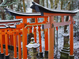 Orange-Red Gates (Tori) Lining Pathways of Fushimi-Inari-Taisha Shrine Photographic Print by Frank Carter